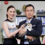 猫・リコ(ナイトウ旅行会社宣伝部長)のかわいい画像&動画まとめ!