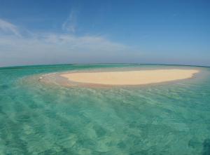百合が浜   Google 検索