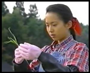 和久井映見若い頃4