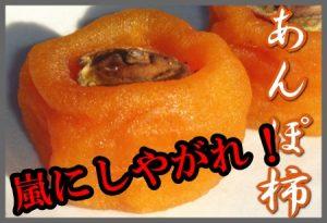 嵐にしやがれあんぽ柿